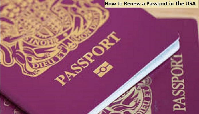 How to Renew a Passport in The USA